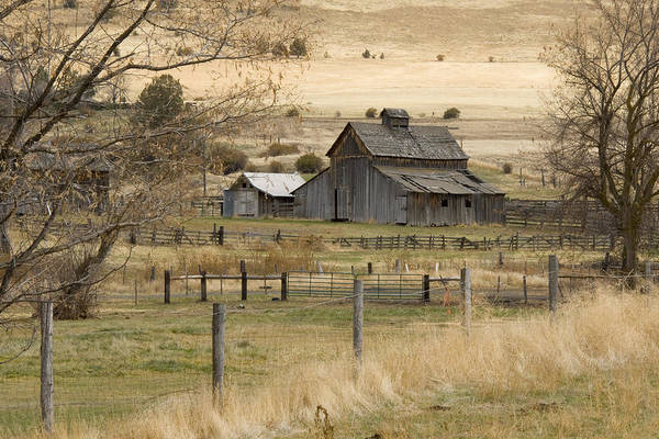 Photograph - Farmstead by Ramona Murdock