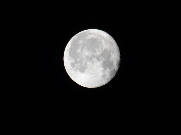 Photograph - February 2012 Full Moon by Beth Akerman
