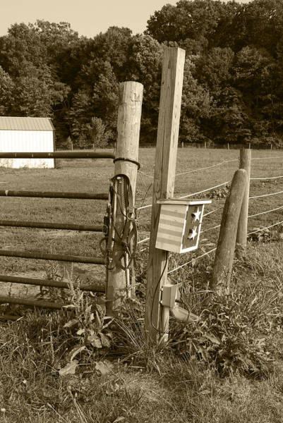 Photograph - Fence Post by Jennifer Ancker