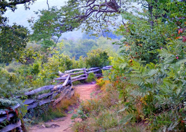 Photograph - Fence To The Blueberries Filtered by Duane McCullough