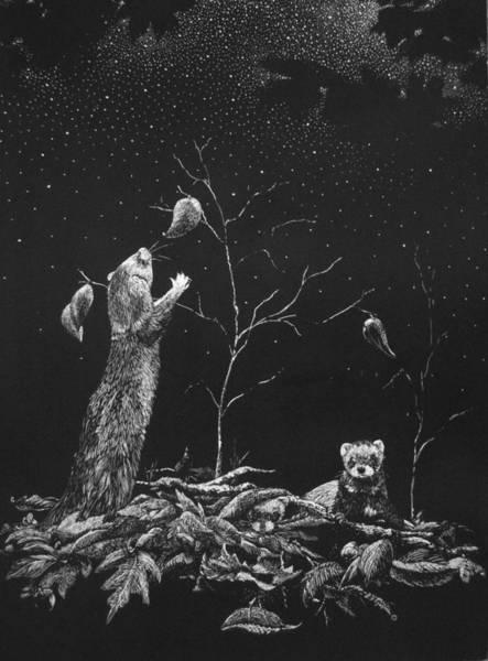 Ferrets Drawing - Ferret Dreams by Linda Creapeau