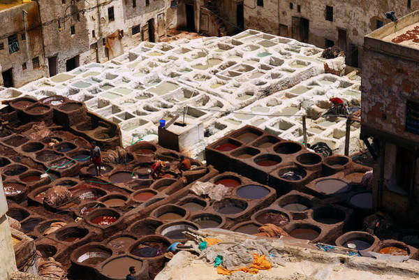 Photograph - Fez Tannery by Ivan Slosar