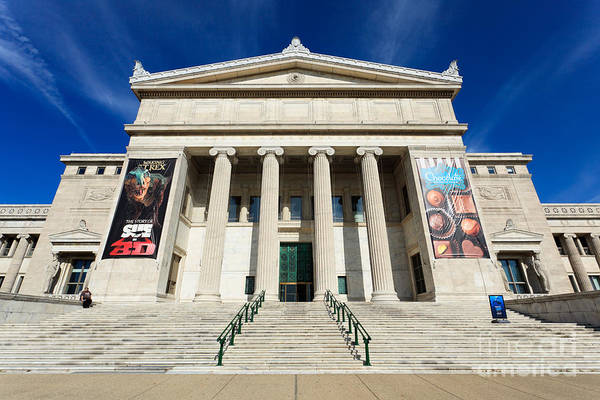 Editorial Photograph - Field Museum In Chicago by Paul Velgos