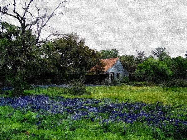 Photograph - Field Of Bluebonnets In Digital Oil by Sarah Broadmeadow-Thomas