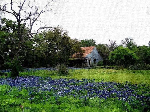 Photograph - Field Of Bluebonnets In Digital Watercolor by Sarah Broadmeadow-Thomas