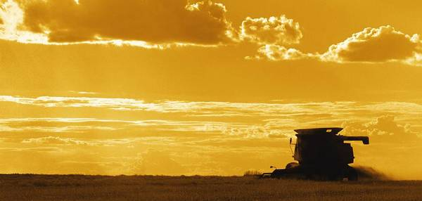 Toil Photograph - Field With Combine At Sunset by Darren Greenwood