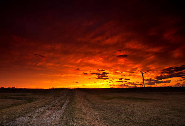 Wall Art - Photograph - Fiery Sunset by Cale Best