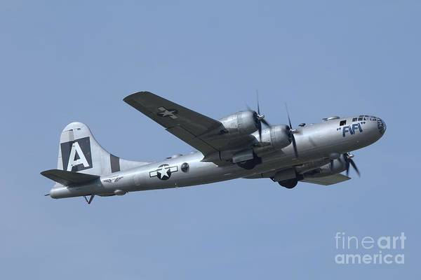 B29 Photograph - Fifi Boeing B29 Superfortress In Flight by Scenesational Photos