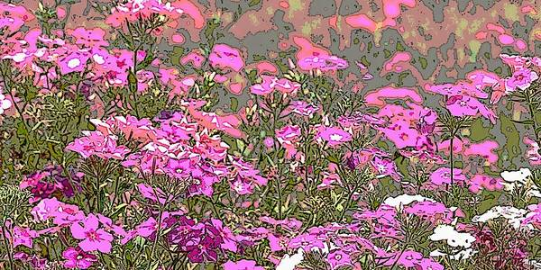 Painting - Fine Art Original Digital Print Wildflowers by G Linsenmayer