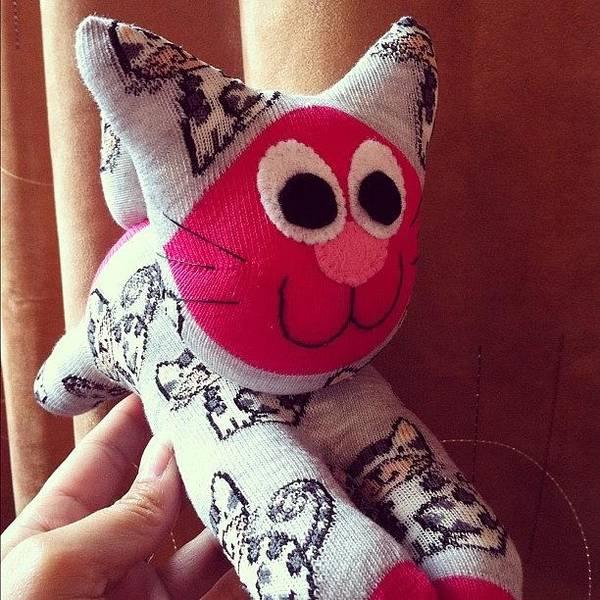 Handmade Wall Art - Photograph - Finished #product!! #sock #cat by Emma  Maudsley