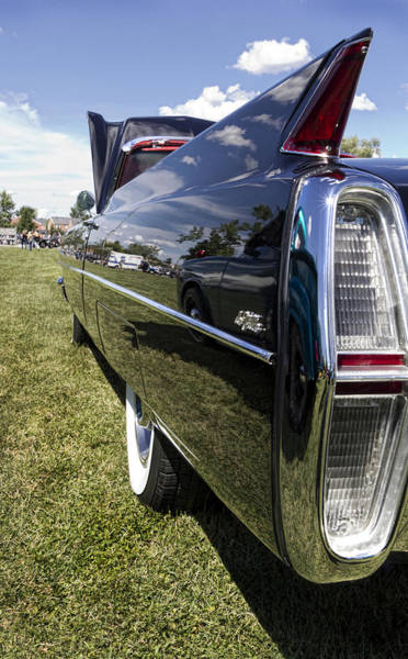 Tail Light Photograph - Fintastic 2 by Peter Chilelli