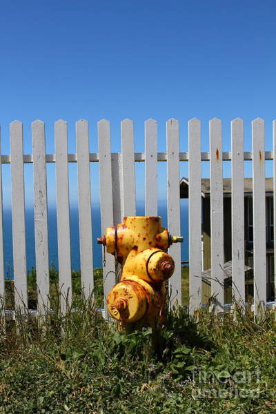 Photograph - Fire Hydrant At The Point Reyes Lighthouse In California 7d16027 by Wingsdomain Art and Photography