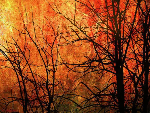 Digital Art - Fire by Rick Wicker