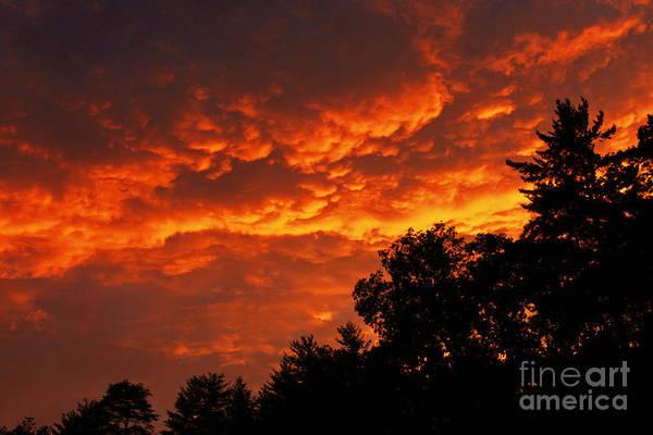 Wall Art - Photograph - Fire Sky by Lena Auxier