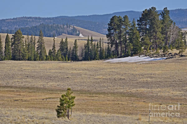 Photograph - Fish Creek Valley by Donna Greene