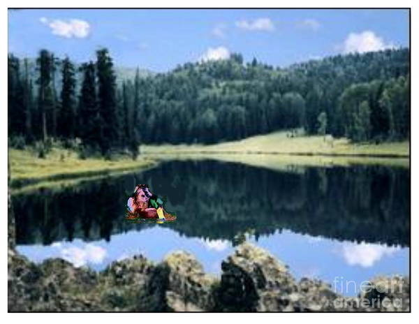 Photograph - Fish In Arizona Lake by Stanley Morganstein