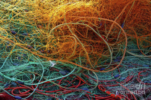 Port Orange Photograph - Fishing Nets by Carlos Caetano