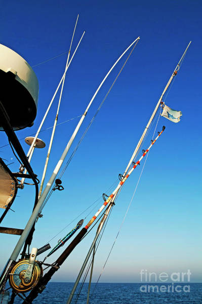 Wall Art - Photograph - Fishing Rods by Sami Sarkis