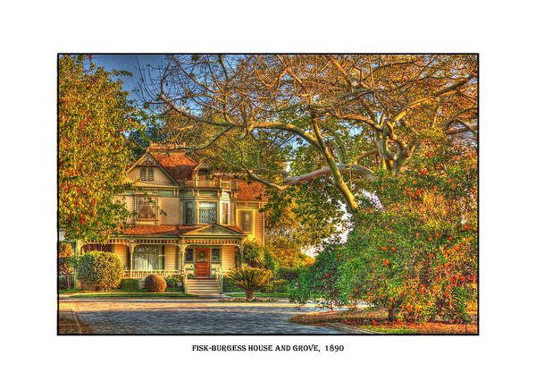Photograph - Fisk-burgess House And Grove by Dorothy Cunningham