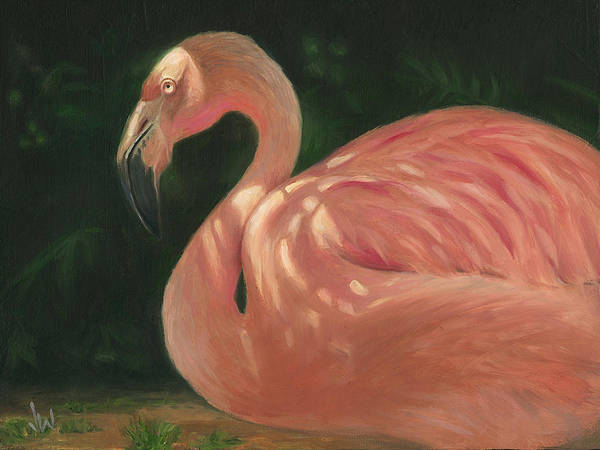 Painting - Flamingo In Dappled Light by Joe Winkler