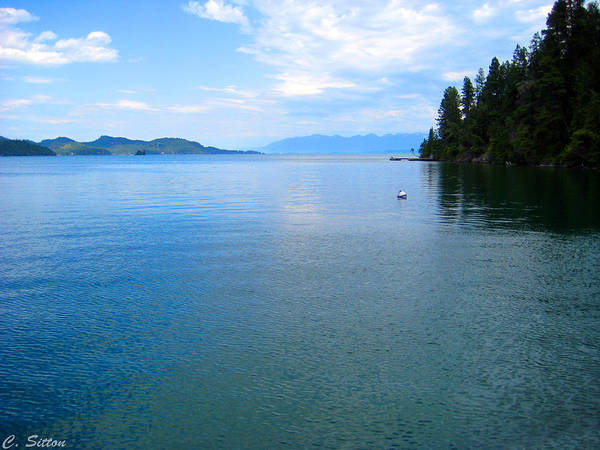 Photograph - Flathead Lake In July by C Sitton