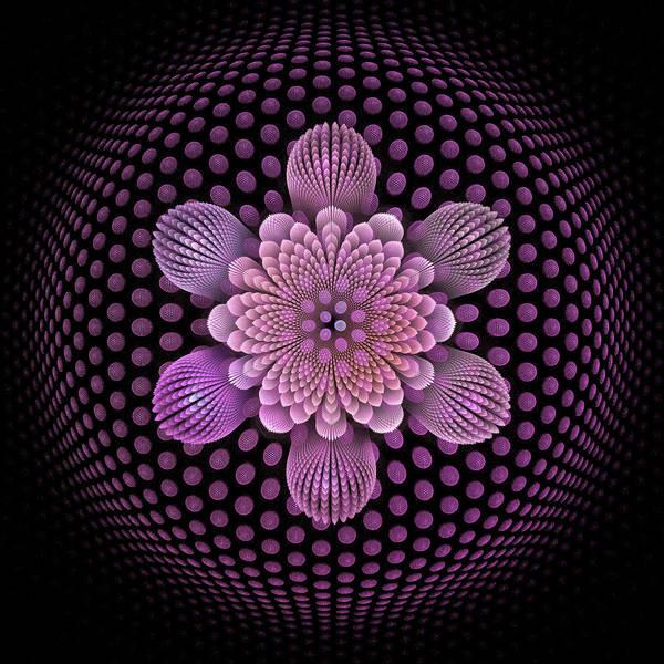 Wall Art - Digital Art - Fleur D'aire by Pam Blackstone