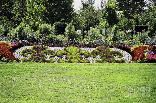 Photograph - Fleur-de-lys Versailles Garden by Donna L Munro