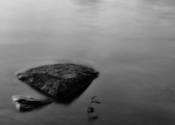 Photograph - Flood by Mark Fuller