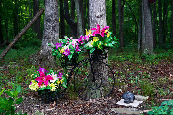 Crossville Photograph - Floral Bicycle On A Cloudy Day by Douglas Barnett
