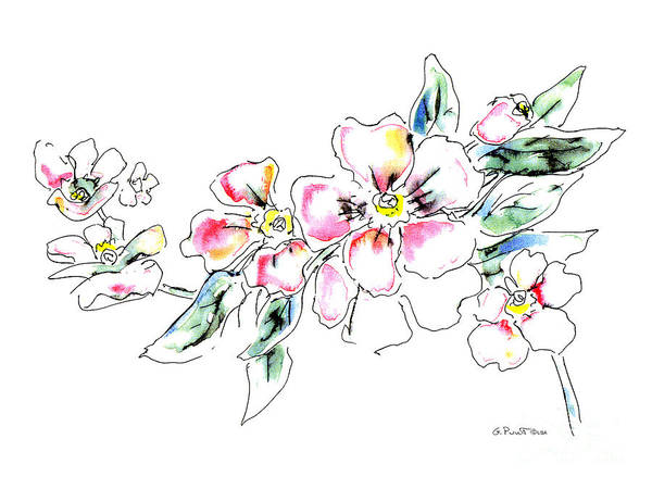 Painting - Floral Watercolor Drawings 5 by Gordon Punt