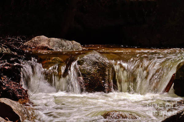 Truckee River Photograph - Flow by Mitch Shindelbower