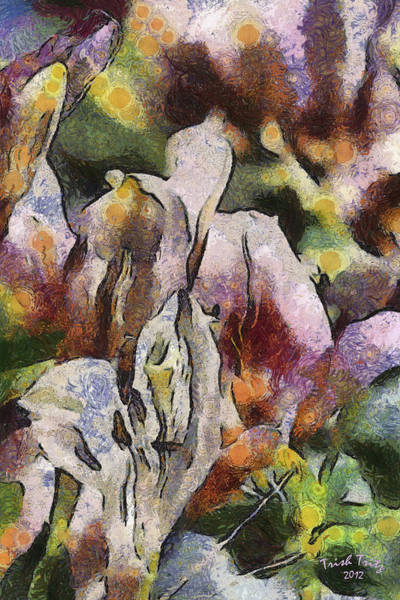 Photograph - Flower Full Of Color by Trish Tritz