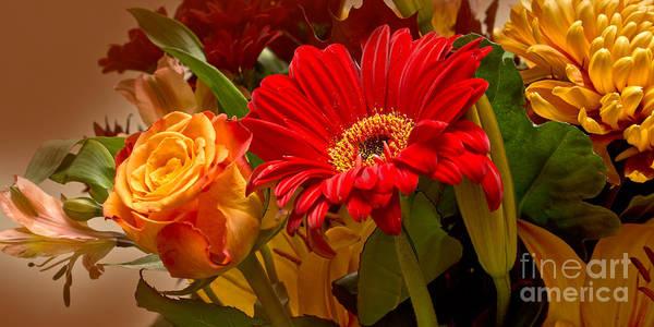 Photograph - Flower Greetings by Lutz Baar