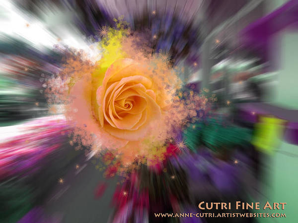 Photograph - Flower Power by Anne Cameron Cutri