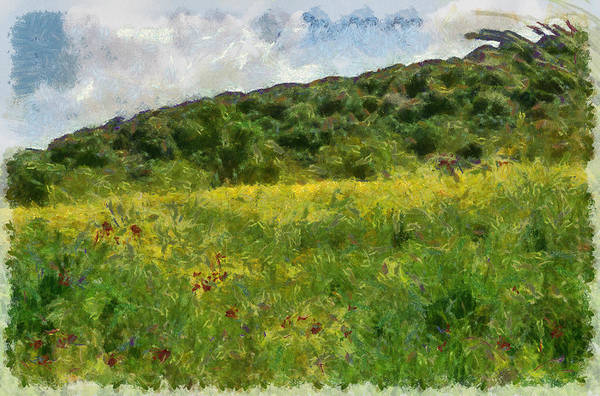 Photograph - Flowering Fields by Michael Goyberg