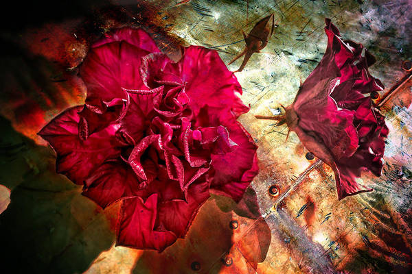 Photograph - Flowers And Steel by Keith Allen