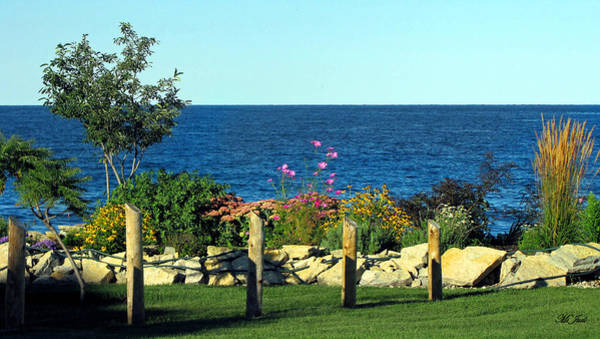 Photograph - Flowers By The Bay by Ms Judi