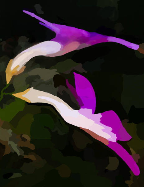 Digital Art - Flowers Dancing by Jim Proctor