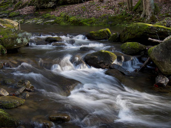 Photograph - Flowing Love by Victoria Ashley