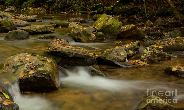 Wall Art - Photograph - Flowing Stream by Matthew Trudeau