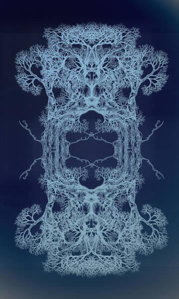 Fluidity Of Me Tree 17 Hybrid 2 Art Print