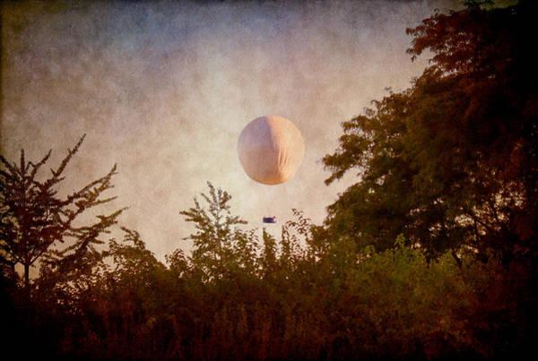Photograph - Fly Away by Milena Ilieva