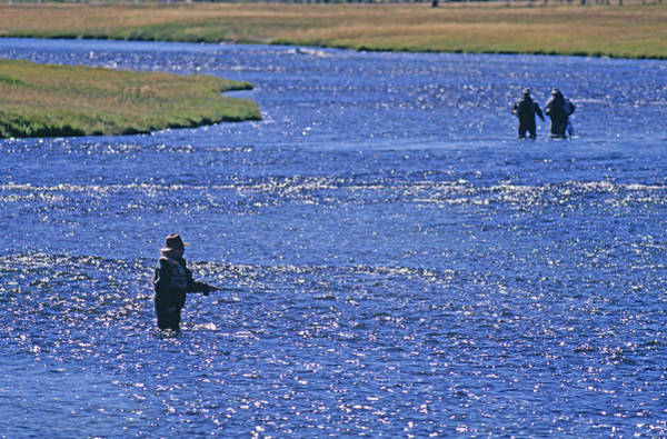 Firehole River Wall Art - Photograph - Fly Fishermen Wade In The Shallows by Gordon Wiltsie