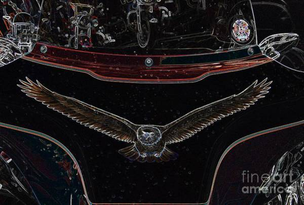 Photograph - Fly Like An Eagle by Anthony Wilkening