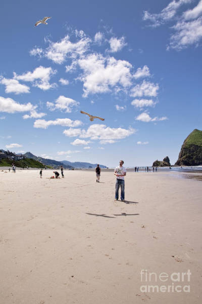 Flying A Kite Photograph - Flying A Bird Kite Near Haystack Rock Canon Beach Oregon Usa by Sherry  Curry