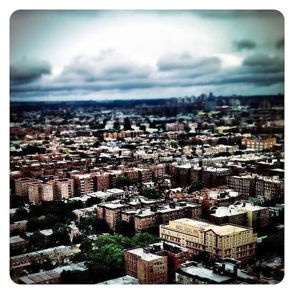 Queens Wall Art - Photograph - Flying Over Queens by Natasha Marco