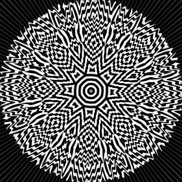 Digital Art - Focus by Visual Artist Frank Bonilla