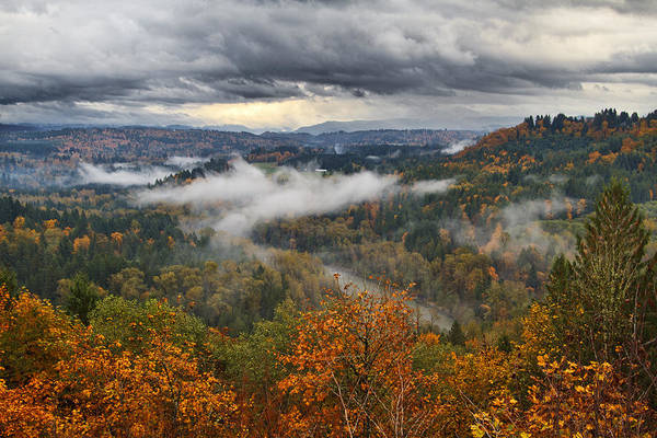 Photograph - Fog At Johnsrud by Wes and Dotty Weber