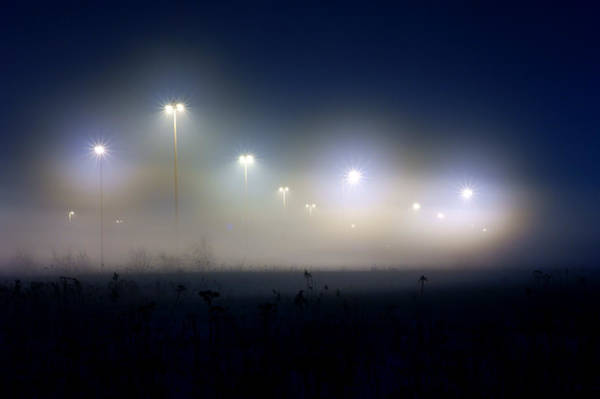 Wall Art - Photograph - Fog by Cale Best