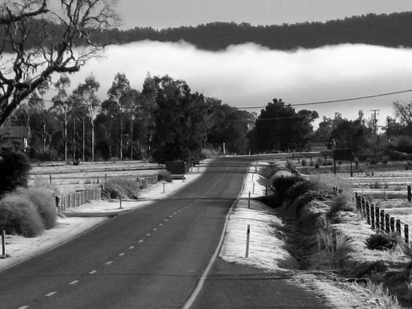 Photograph - Fog In Black And White by Rachael Shaw